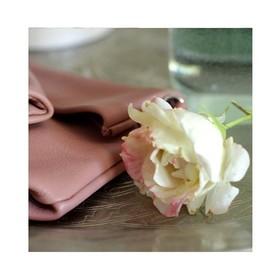 La nature est parfois surprenante, les roses de mon rosier étaient jaunes, elles sont maintenant quasiment blanches avec une pointe de rose, j'adore ! 🌹 . . . #flower #rose #marquefrançaise #maroquinerie #nature #vieuxrose #accessoiresdemode #pochette #tendancemode #mariagechic #creatrices #marquecreateur #fleur