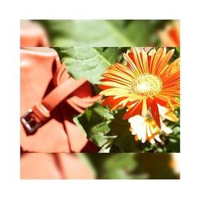 """""""J'veux du soleil, j'veux du soleil, j'veux du soleiiiiil ...""""🎵 C'est bon, vous l'avez? Vous me confirmez que je vous ai posé cette chanson dans le coin de votre tête pour la journée !? 😂 . . . #orange #flower #energie #ceinturefemme #ceinture orange #creatrices #ceinturecuir #ceintureorange #maroquineriefrancaise"""
